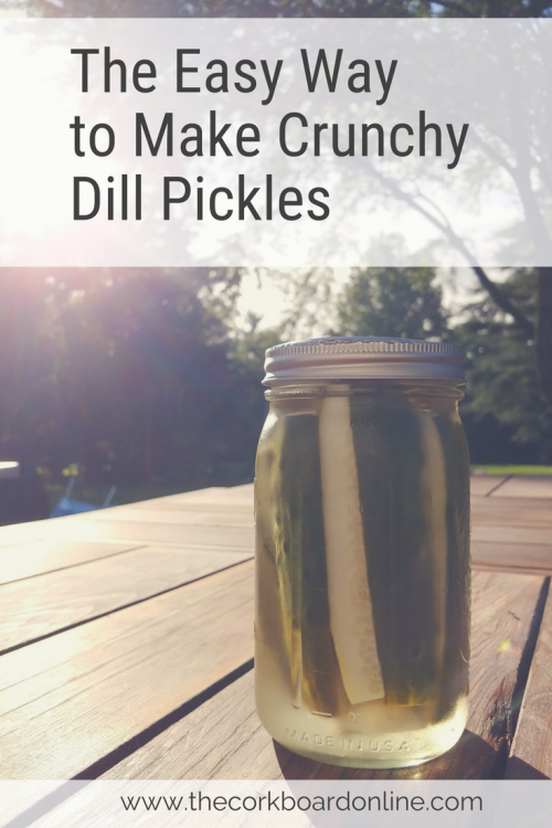 easy crunchy dill pickles